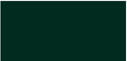 Naroa Susperregi Logo